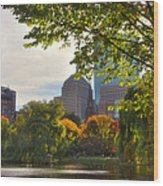 Public Garden Skyline Wood Print by Joann Vitali