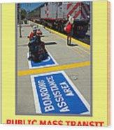 Public Mass Transit Wood Print