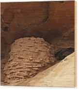 Pueblo Indian Ruins Wood Print