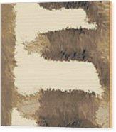 Pueblo Steps Se Wood Print