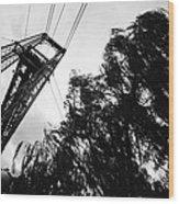 Puente Colgante Iv Wood Print