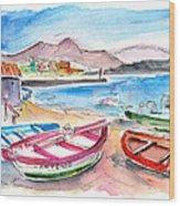 Puerto De Sardina 03 Wood Print