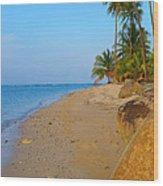 Puerto Rico Beach Wood Print