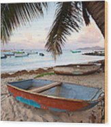 Puerto Rico Morning Wood Print by Patrick Downey