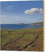 Puffin Island From The Skelligs Ring Wood Print