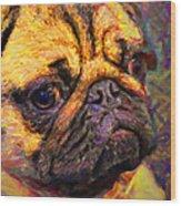 Pug 20130126v1 Wood Print by Wingsdomain Art and Photography