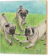 Pug Dog Playing Canine Animal Pets Art Wood Print