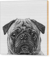 Pug Dog Square Format Wood Print