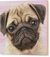 Pug Portrait Wood Print by Greg Cuddiford