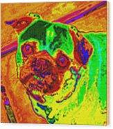 Pug Portrait Pop Art Wood Print
