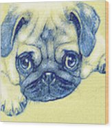 Pug Puppy Pastel Sketch Wood Print