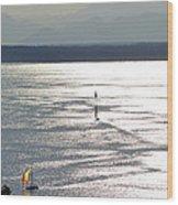 Puget Sound 2014 Wood Print
