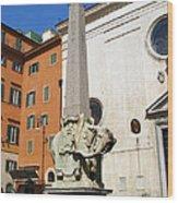 Pulcino Della Minerva Wood Print