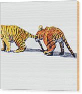 Pulling A Tiger By The Tail Wood Print