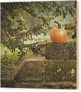 Pumpkin Wood Print by Amanda Elwell