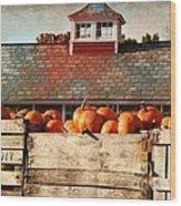 Pumpkin Crates Barn  Wood Print