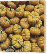 Pumpkin Galore. Wood Print