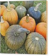Pumpkin Harvest Wood Print