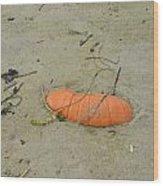 Pumpkin In The Sand Wood Print