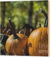 Pumpkin Line Up Wood Print