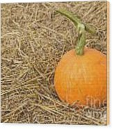 Pumpkin On The Straw  Wood Print