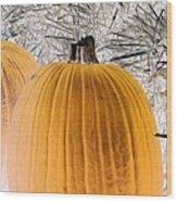 Pumpkin Patch - Photopower 1563 Wood Print