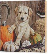 Pumpkin Puppy Wood Print