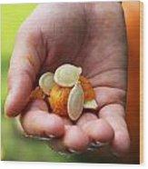 Pumpkin Seed Wood Print