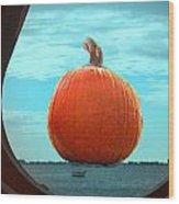 Pumpkin View Wood Print