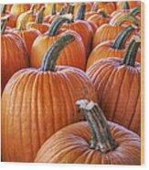 Pumpkins Galore - Autumn - Halloween Wood Print