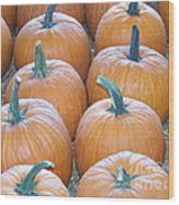 Pumpkins Galore Wood Print by Kevin Croitz