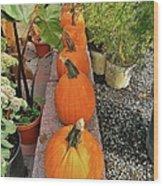 Pumpkins In A Row Wood Print