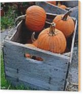 Pumpkins In Wooden Crates Wood Print