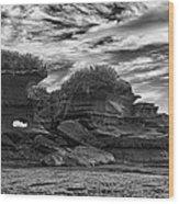 Punakaiki Truman Track #2 - Black And White Wood Print