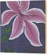 Punctilious Pink Daylily Wood Print