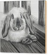 Punky Bunny Wood Print