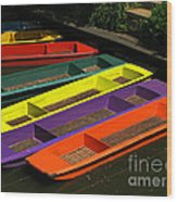 Punts For Hire Wood Print