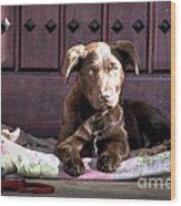 Pup Wood Print