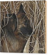 Pup Hiding In Tall Grass Wood Print