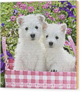 Puppies In A Pink Basket Wood Print