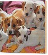 Puppy Crew Wood Print