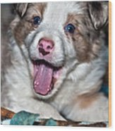 Puppy Laughter Wood Print