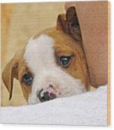 Puppy Love Wood Print