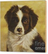 Puppy Portrait Wood Print
