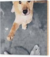 Puppy Saluting Wood Print
