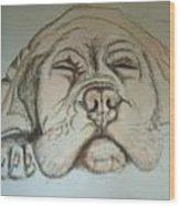 Puppy Sleeping Wood Print