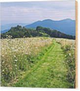 Purchase Knob Wood Print