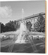 Purdue University Loeb Fountain Wood Print by University Icons