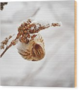 Pure Bliss Wood Print