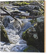 Pure Mountain Stream Wood Print